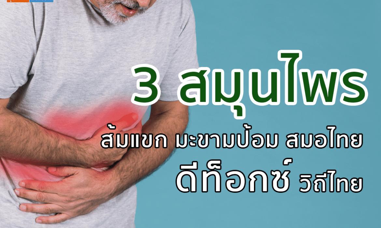 3 สมุนไพร ส้มแขก มะขามป้อม สมอไทย ดีท็อกซ์วิถีไทย