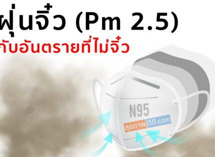ฝุ่นจิ๋ว (Pm 2.5) กับอันตรายที่ไม่จิ๋ว