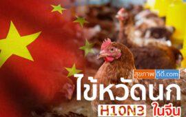 ไข้หวัดนก รายแรกที่จีน สายพันธุ์ H10N3