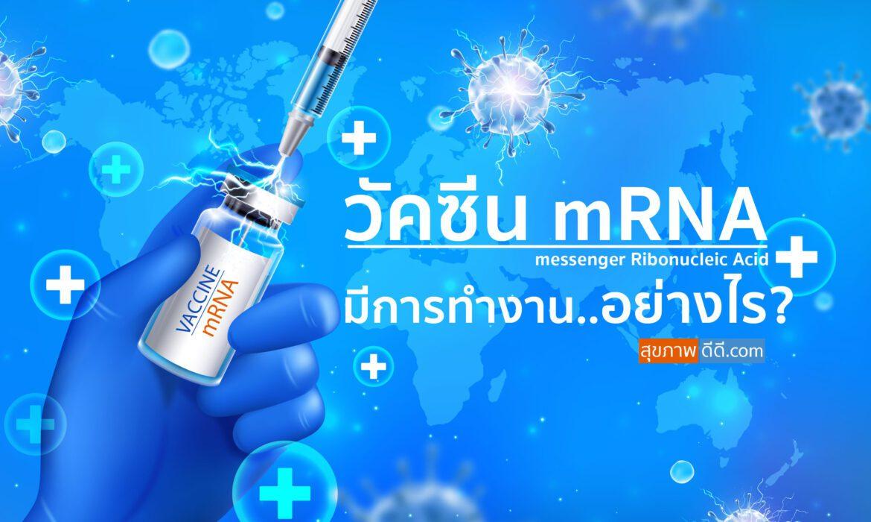วัคซีน mRNA มีการทำงานอย่างไร